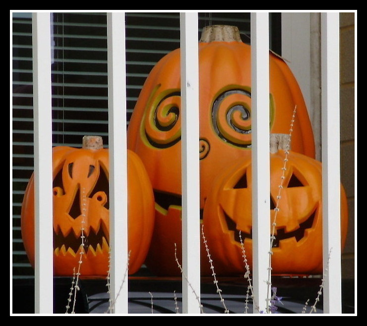 PUMPKINS by Anthony Buccino