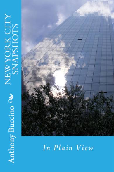NEW YORK CITY SNAPSHOTS In Plain View by Anthony Buccino